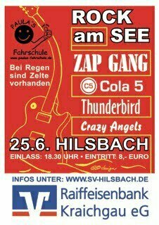 Rock am See 2011